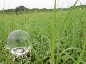 画像1: クリスタルボール 70mm