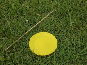 画像1: スピニングプレート 黄色