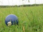 他の写真2: リジッドボール XL 緑