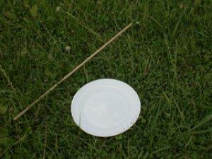画像1: スピニングプレート 白