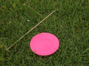 画像1: スピニングプレート ピンク