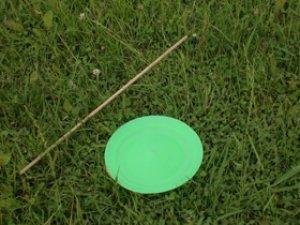 画像1: スピニングプレート 緑